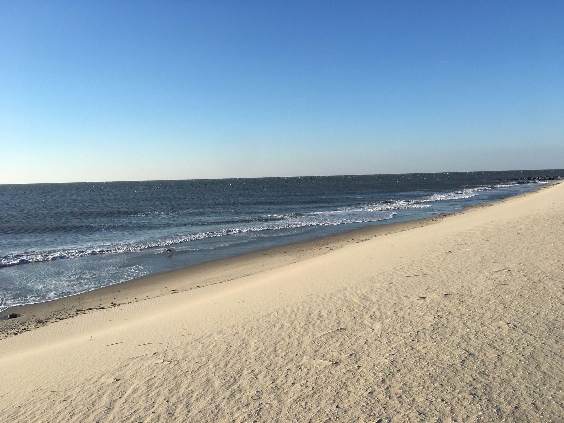 Shoreline Beach