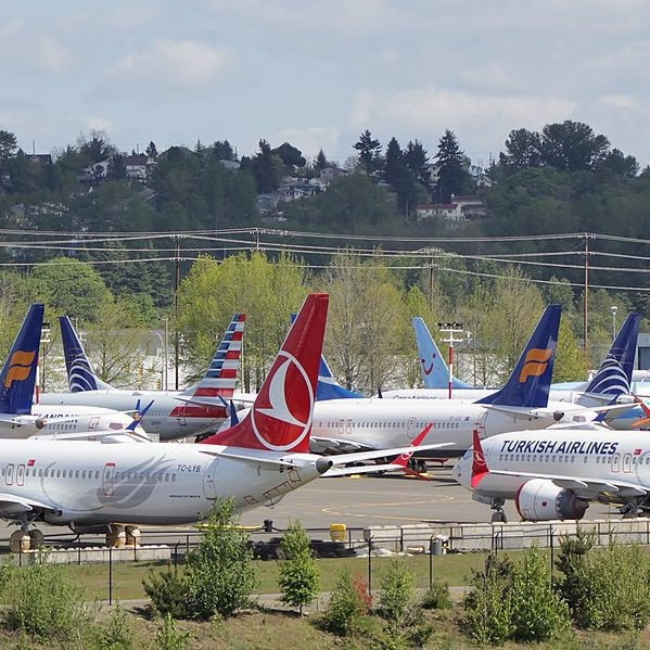 Boeing 737 MAX aircraft parked on a tarmac.